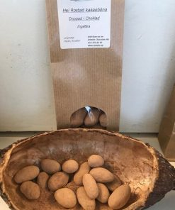 kakaoböna doppade i choklad & kakao, ingefära